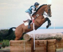 Chelsea and Albert VI competing at Treborough Hill (photo copyright Jayphotos)