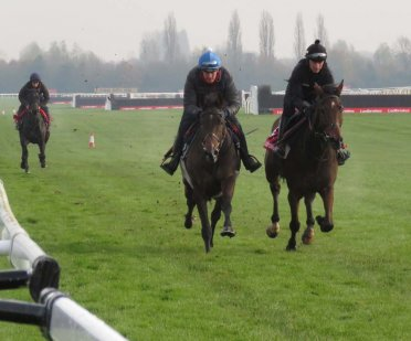 Galloping. L to r: Private Malone (Henry Platt), Paisley Park (Barry Fenton) & De Rasher Counter (Adam Wedge)