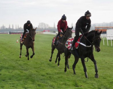 L to r: Ok Corral (AP McCoy) , Beware the Bear (Jerry McGrath) & Might Bite (Nico de Boinville)