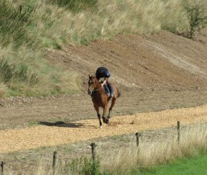 Silent Steps leads up the new gallop