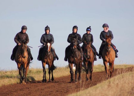 Walking back after the gallop