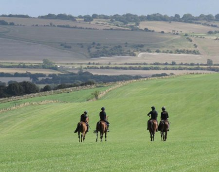 Riding out the new gallop