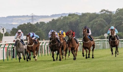 Bay Watch - second from left - comes through to win (Photo: Sue Ford)