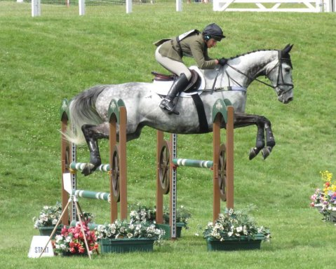 Saphir du Rheu flying over the jumps in Barbury's main arena
