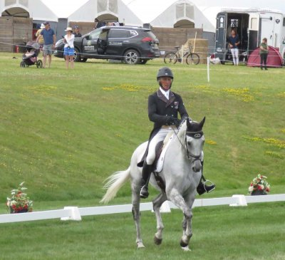 CIC4*-S contender Andrew Nicholson and Swallow Springs