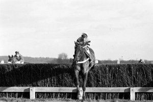 Burrough Hill Lad wins at Newbury in 1984 with John Francome up (Photo: Newbury Racecourse)
