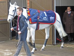 Alan King watches as Smad Place is led to the parade ring (2016)