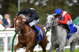 Dark Lady (grey) ridden by Pat Dobbs in the Shadwell Dick Poole Fillies  -  Pic:  Denis Murphy