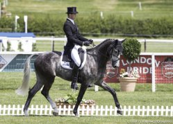 Libby Law's classic photo of New Zealander Jesse Campbell & Amsterdam II