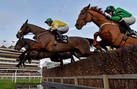 Carole's Destrier (No. 3) clears the water jump (Photo: Newbury Racecourse)