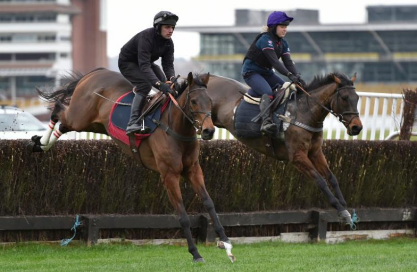 Coneygree (left) & Flintham schooling at Newbury (Photo courtesy Newbury Racecourse)