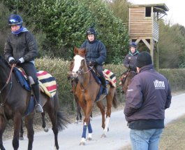 Valdez: after the gallop Alan King check's progress with his rider