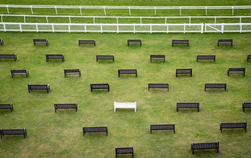 All in white! Newbury Racecourse's 'proposal bench'