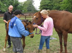 Sharon Hurley leads Seaham Hall over to check her foal