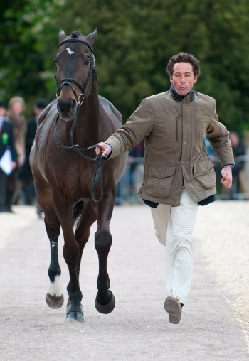 Marcelo Tosi & Eleda All Black - trotting up for the judges [Photo copyright Nico Morgan Photography.)