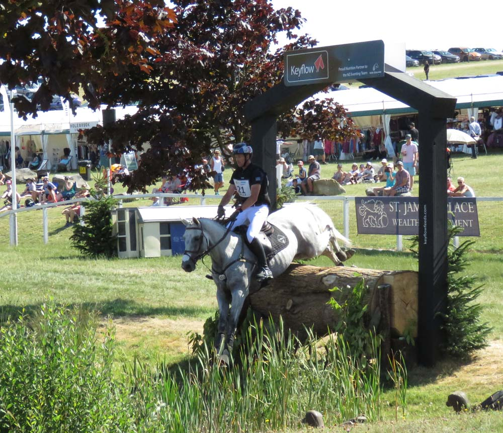 Tom Carlile & Upsilon take the Keyflow fence - near the end of the cross country
