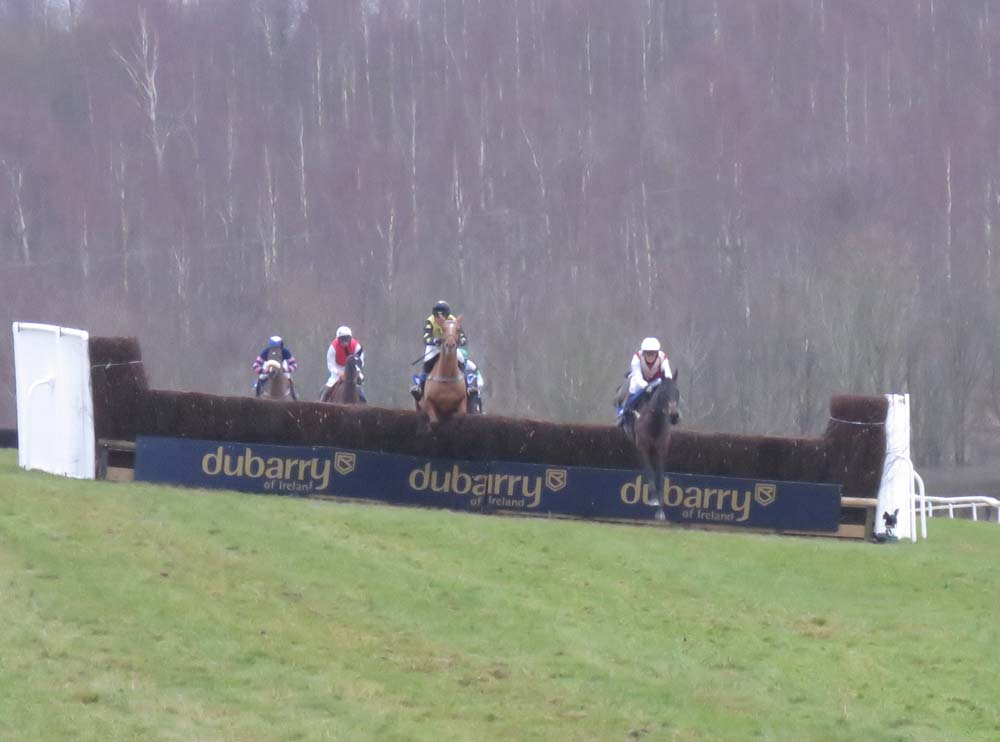 Sonneofpresenting (right) leads Beau Phil who was to fall heavily at the third third last fence