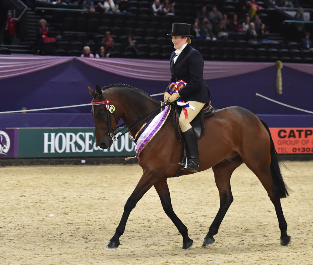 Farewell Horse of the Year Show victory for Beware Chalk Pit & Rebecca Court (Photo courtesy 1st Class Images/HOYS)
