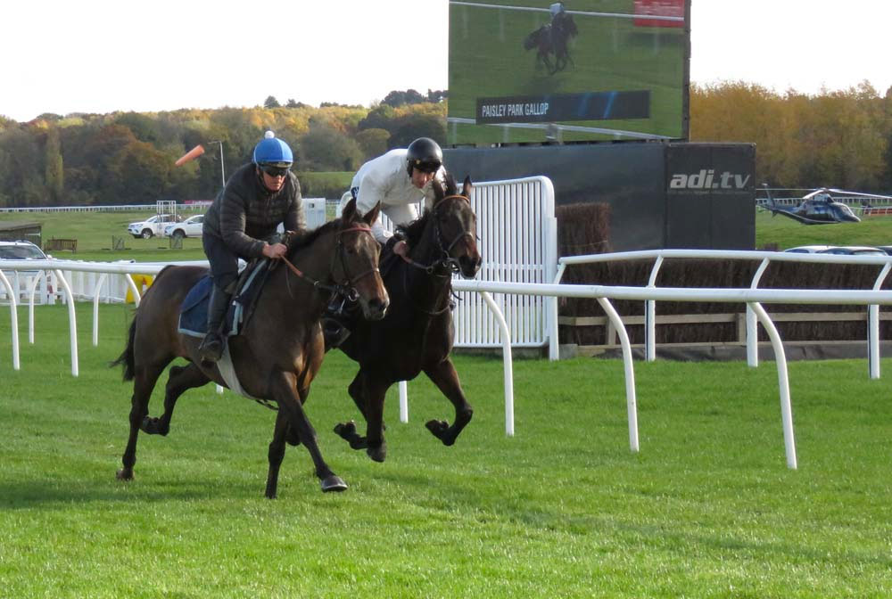 Paisley Park (with Barry Fenton - blue hat) & stablemate Hawk's Well (Aidan Coleman) galloping on Newbury's turf