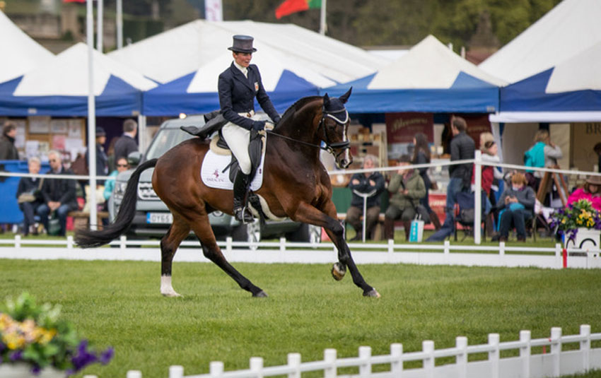 Flora Harris at the Chatsworth Event Rider Masters 2017