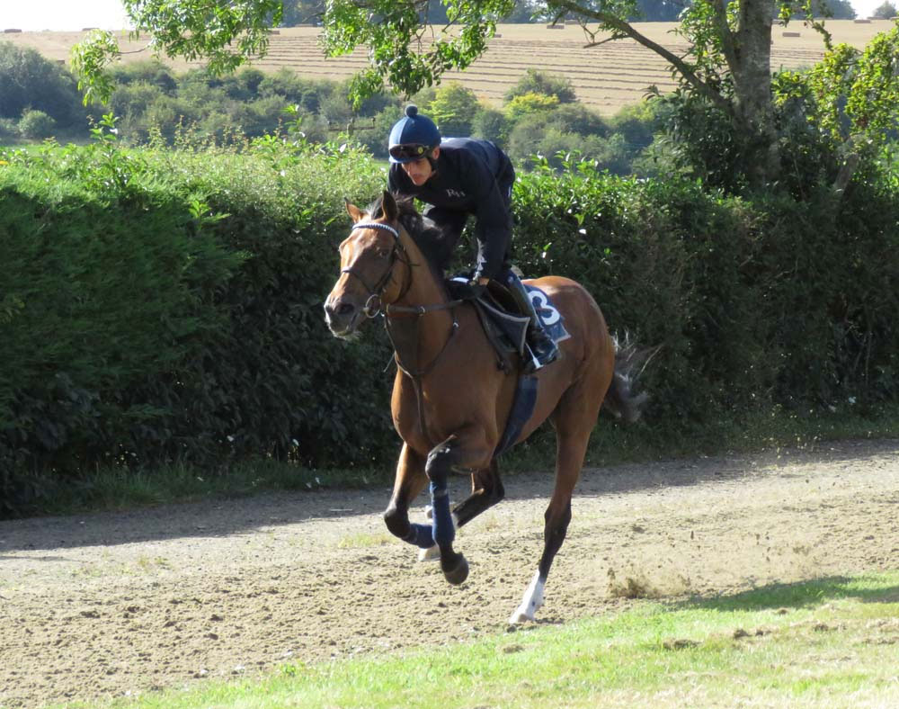 Raymond Tusk on the Herridge gallop (September 2019)