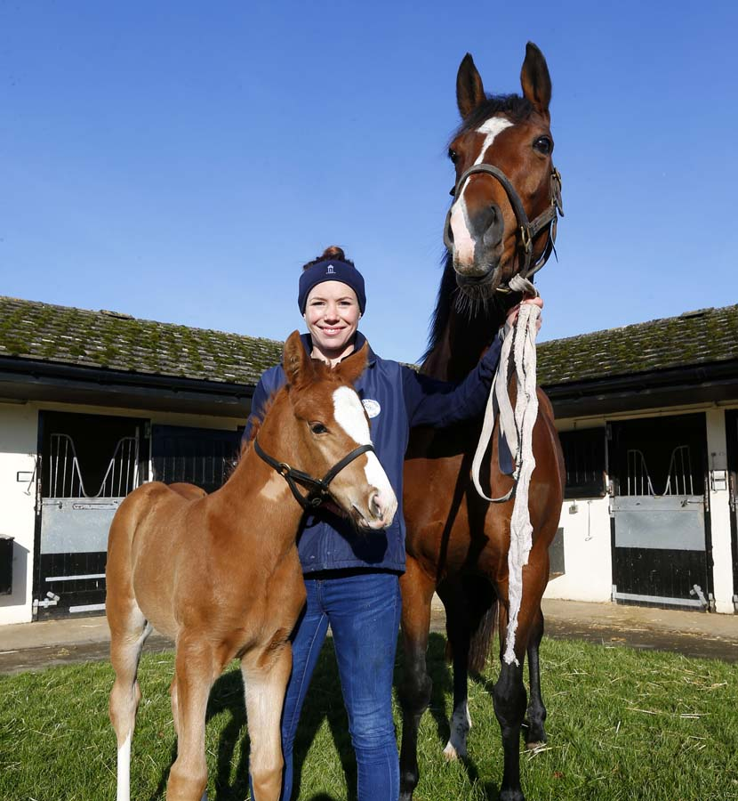 Josephine Saunders with a Hillwood mare & offspring (Photo copyright Dan Abraham)