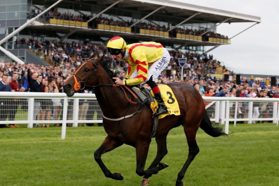 Harry Angel storms to victory in the 2016 Dubai Duty Free Mill Reef Stakes (Photo: Newbury Racecourse)