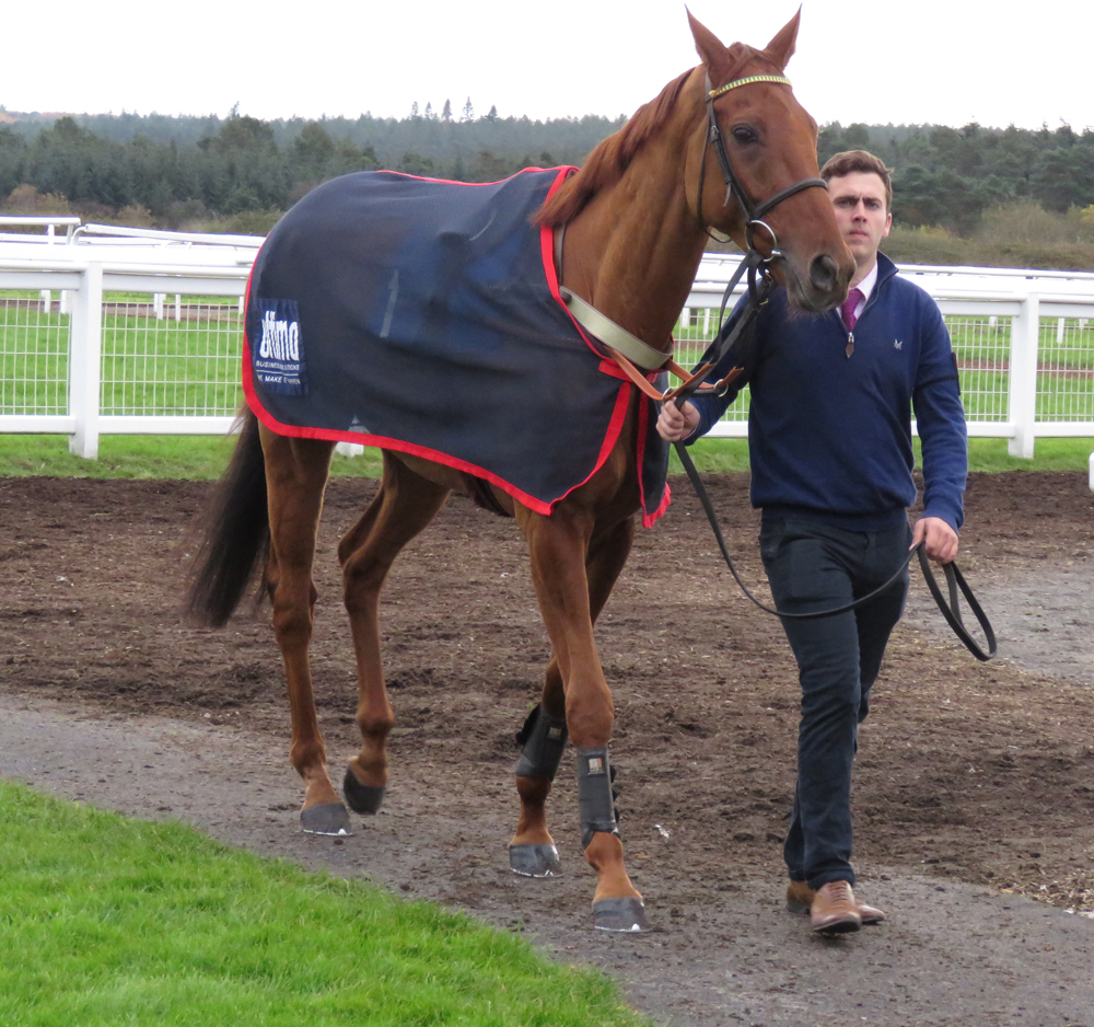 Yanworth at Exeter - before his fall