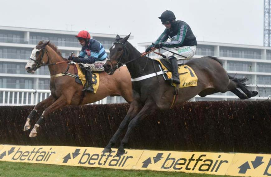 Altior - nearest the camera - jumps beside Valdez (Newbury Racecourse photo)