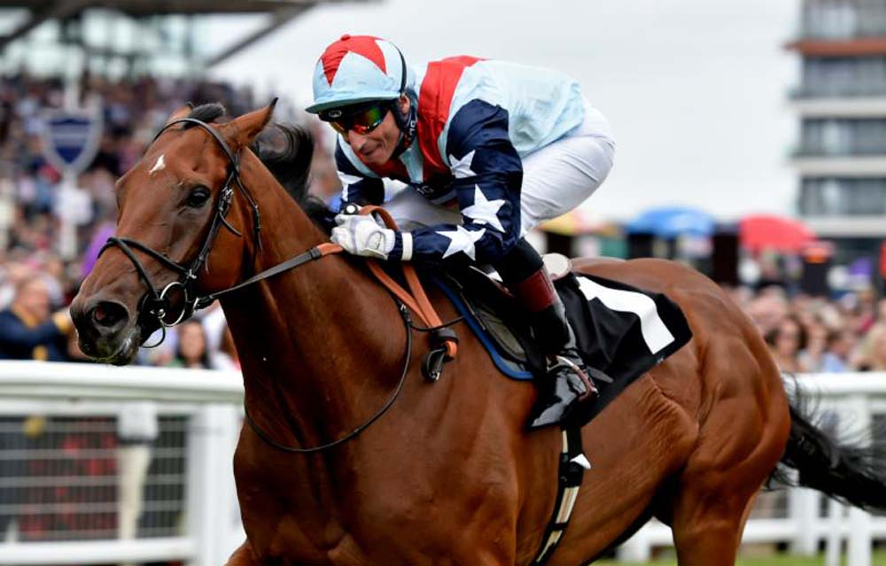 Sir Dancealot takes the Ladyswood Stud Hungerford Stakes (Photo: Newbury Racecourse)
