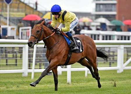 Mottrib wins the first race under David Egan (Photo: Newbury Racecourse)