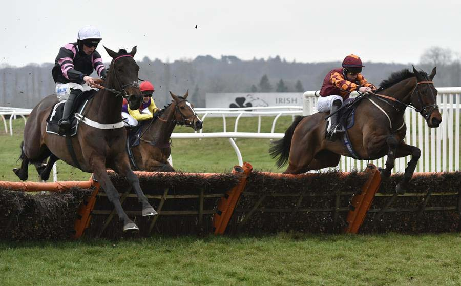 Emitom (right) on the way to win The RR Elite 'National Hunt' Novices' Hurdle Race
