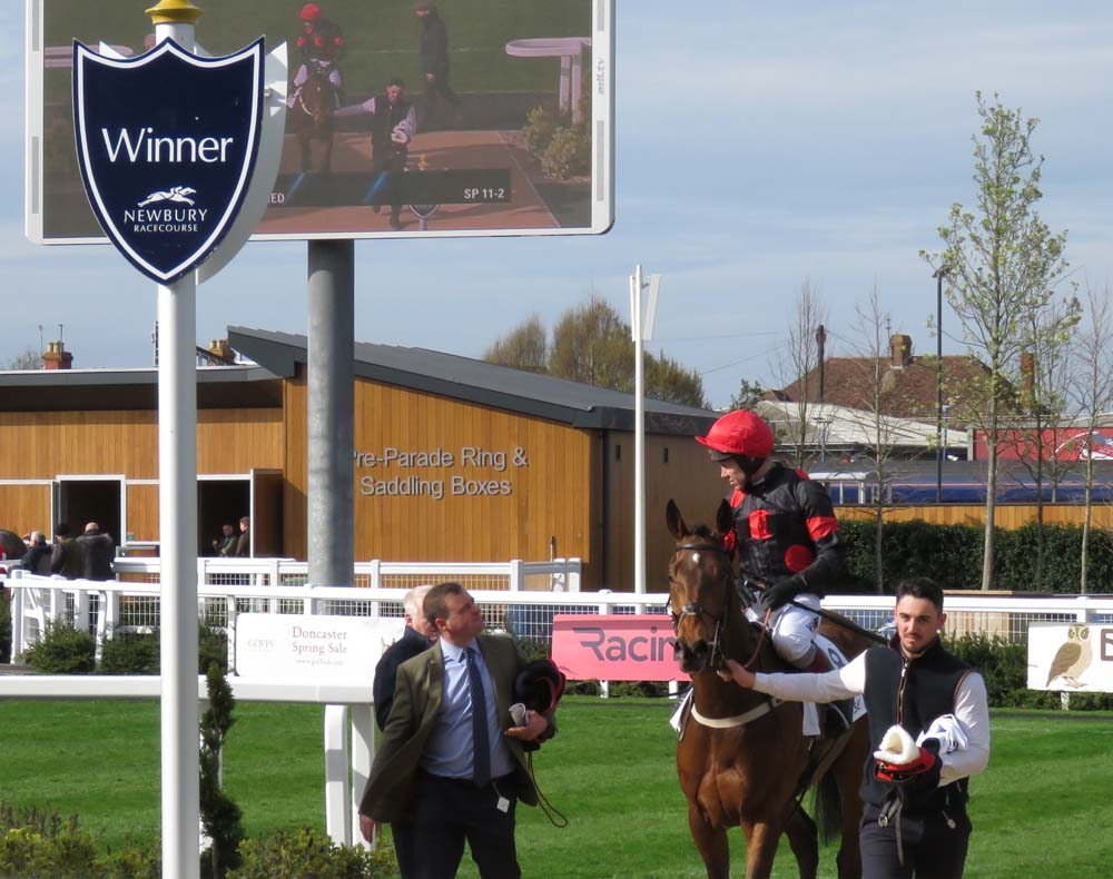 Winner's enclosure: Neil King (left) with Richard Johnson & The Knot Is Tied