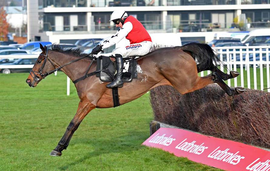 Bennys King at Newbury's Ladbrokes Winter Carnival meeting last November