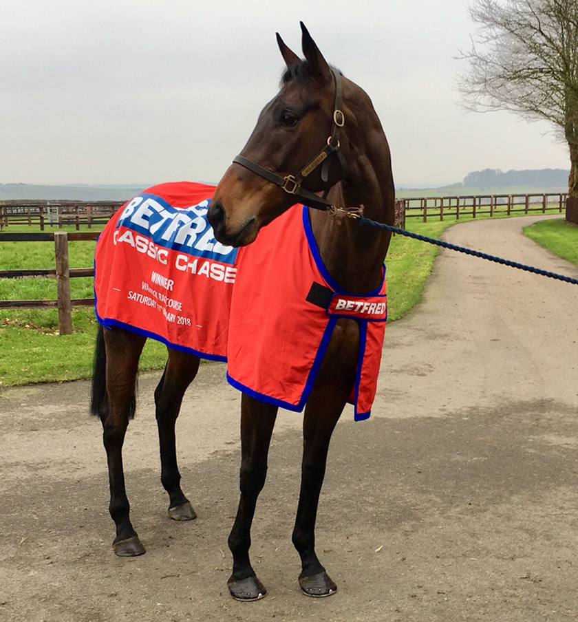 Milansbar in his Betfred Classic Chase rug