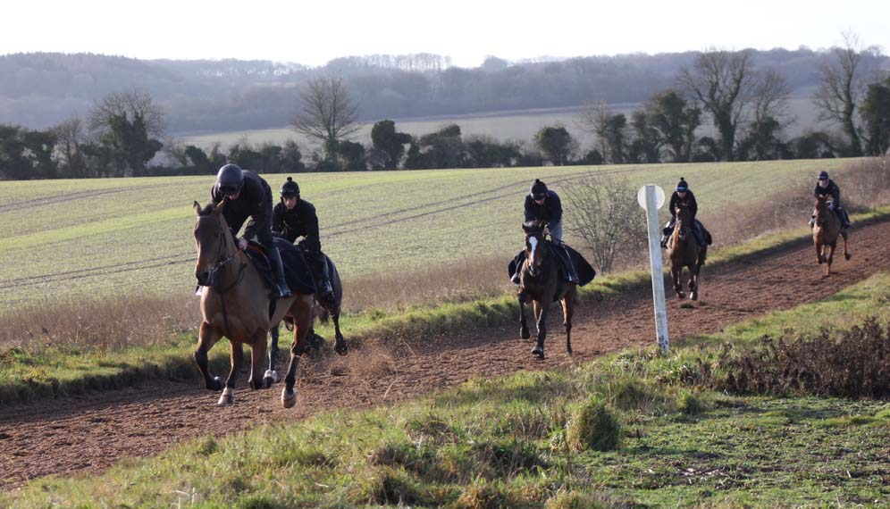 On the Lambourn all weather gallop