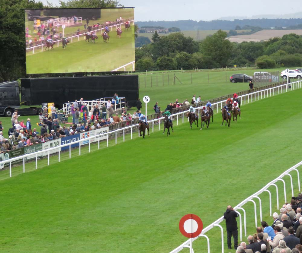 Salisbury Racecourse: nearing the finish
